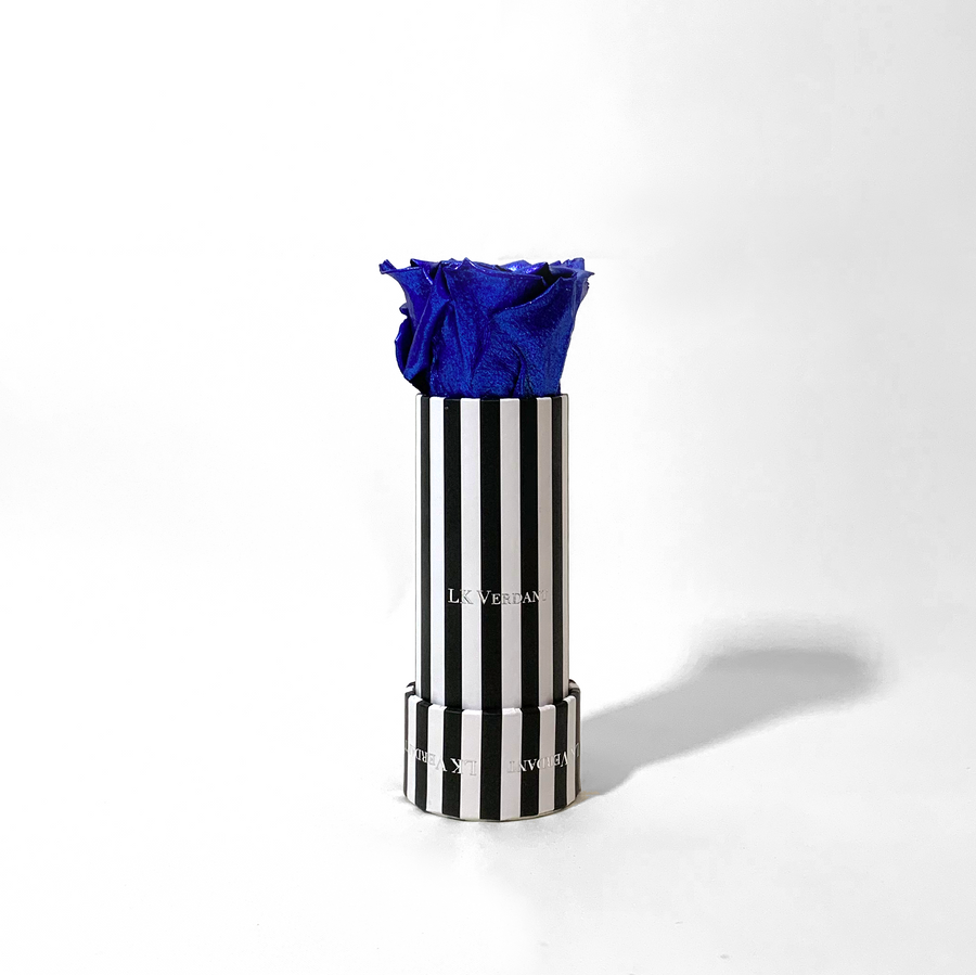 The Candy Stripe Metallic Blue Forever Rose - Shop for Flowers and Forever Roses - LK VERDANT