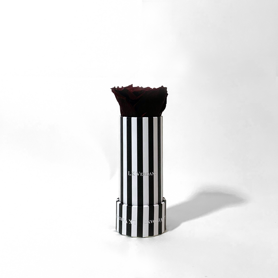 The Candy Stripe Deep Red Forever Rose - Shop for Flowers and Forever Roses - LK VERDANT
