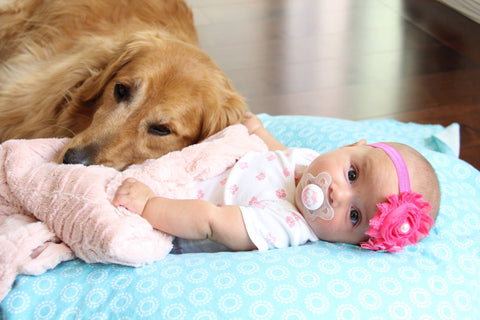 Introducing Your Pets to Your New Baby
