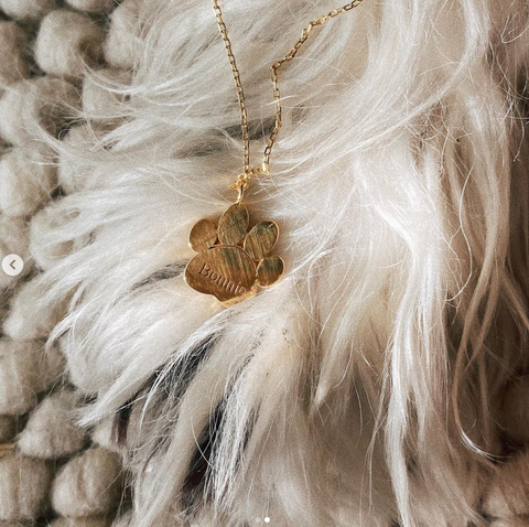 Engraved Dog Paw Necklace