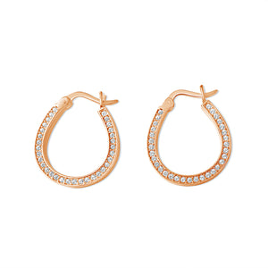 Prosperity horseshoe earrings