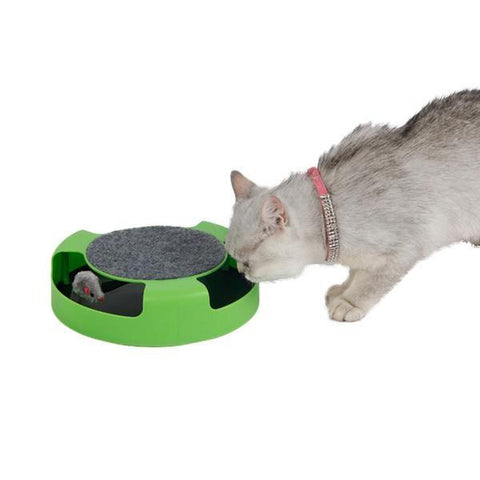 Cat Toy Mouse In Circle Loop