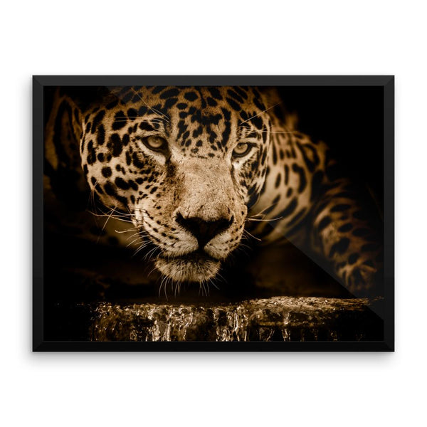 Jaguar Leopard Framed Wall Photo Art Decoration