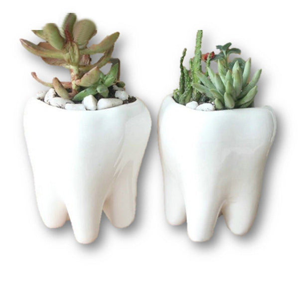 Lawn & Patio - LightningStore Ceramic White Tooth Teeth Succulent Plants Pot Microlandschaft Personalized Office House Balcony Landscape Pot Creative Decorative Flower Pots