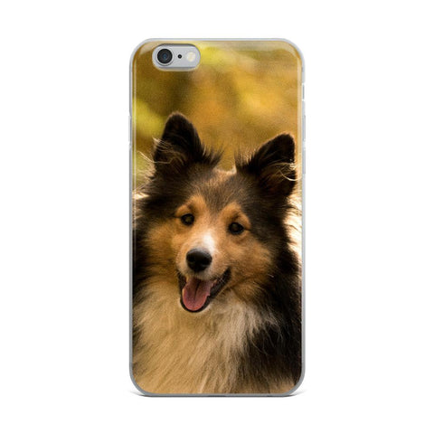 Sheltie IPhone Case -  Shetland Sheepdog IPhone Case