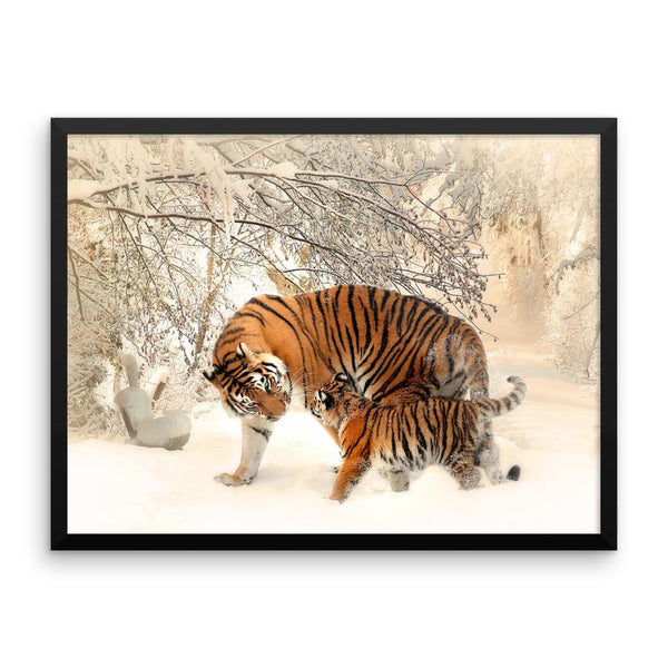 Tiger And Baby Cub In Snow Framed Photo Poster Wall Art Decoration Decor For Bedroom Living Room