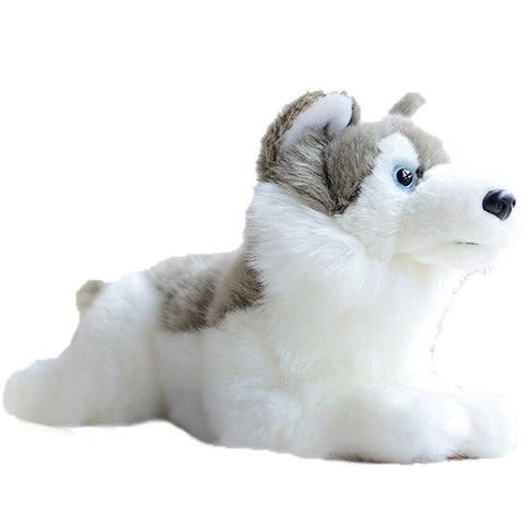 Toy - LightningStore Adorable Cute Siberian Husky Doll Realistic Looking Stuffed Animal Plush Toys Plushie Children's Gifts Animals