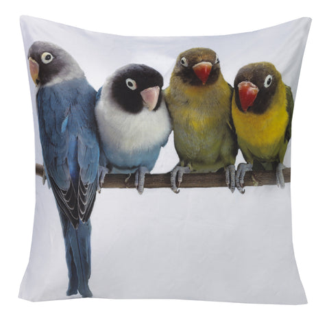 "Prints Budgies 20x20""-Feather Filled"
