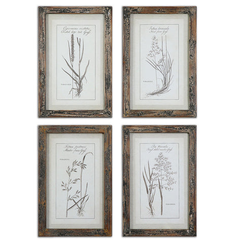 Uttermost 51087 Grasses Framed Art Set/4 - UTMDirect