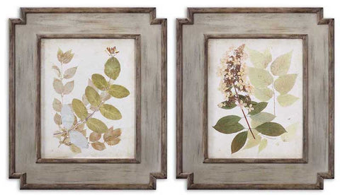 Uttermost 51069 Natures Collage Floral Art Set/2 - UTMDirect