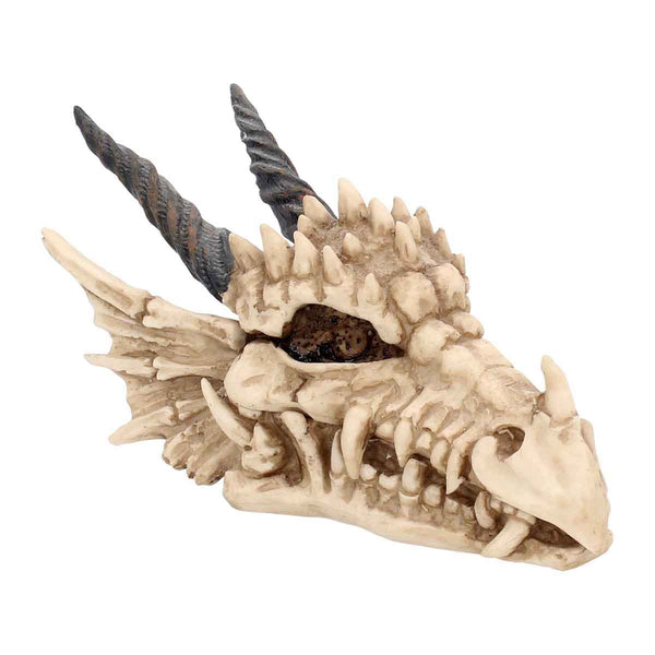 Dragon Skull Box 20cm
