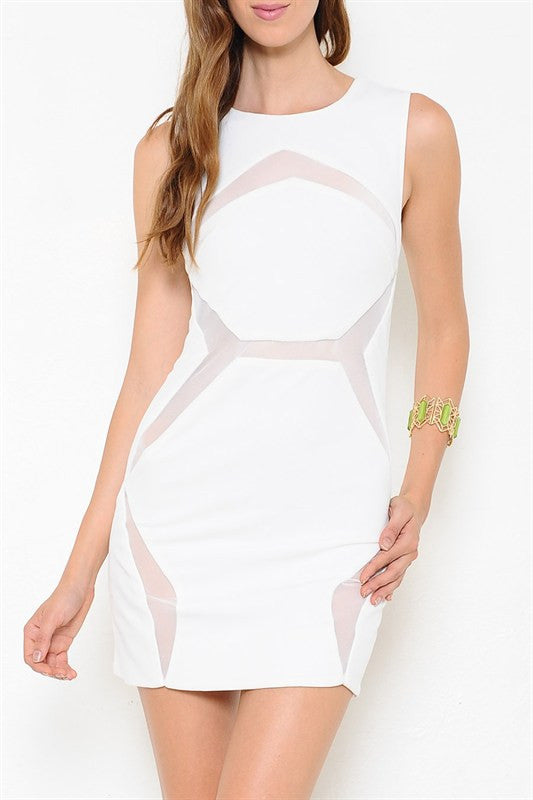 Hidden Secrets Mesh Paneled Dress - Snatched