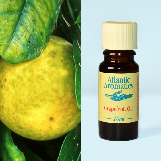 Atlantic Aromatics	Grapefruit	3x10ml