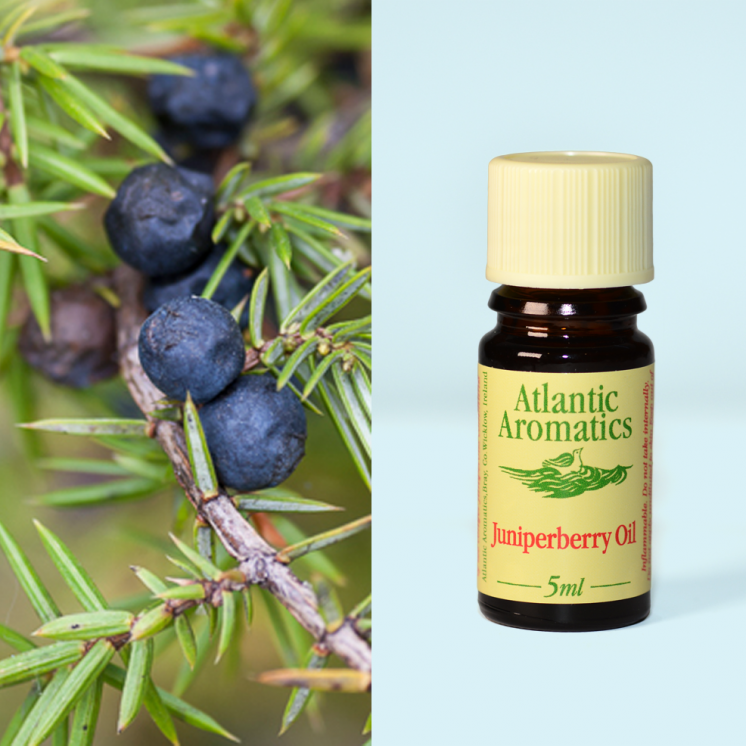 Atlantic Aromatics	Juniperberry (Org)	3x5ml
