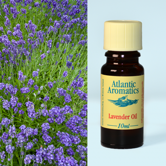 Atlantic Aromatics	Lavender	3x10ml