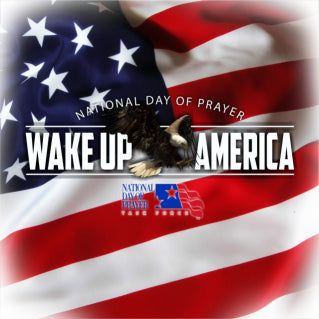 Wake Up America Window Decal