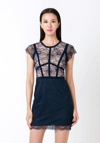 Tulle Sleeved Shift Dress