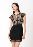Chantilly Lace Mini Dress