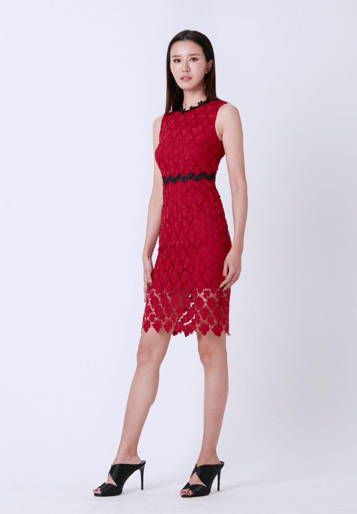 Crocheted Open-Back Pencil Dress