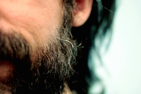 Hot to treat and prevent beard split ends. Bohemian Brothers Beard Blog.