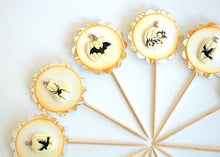 Load image into Gallery viewer, Rustic Halloween Cupcake Toppers, White Pumpkin Decor, Bats, Spiders, Crows