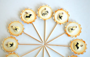 Rustic Halloween Cupcake Toppers, White Pumpkin Decor, Bats, Spiders, Crows