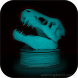 glow in the dark 3d filament