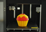 Raise3D N1 FDM 3D Printer