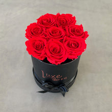 Preserved Red Rose Box