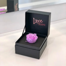 ADELAIDE: Single Preserved Rose Box (+ 7 more colours) - Luxe Blooms
