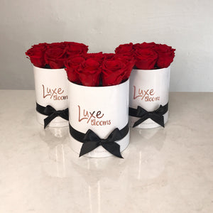 Preserved Red Rose Box - Luxe Blooms