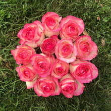 Round Fresh Pink Rose Box - Luxe Blooms