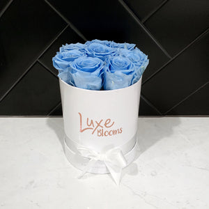 Preserved Blue Rose Box - Luxe Blooms
