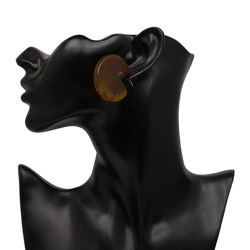 Brown contemporary chunky earrings