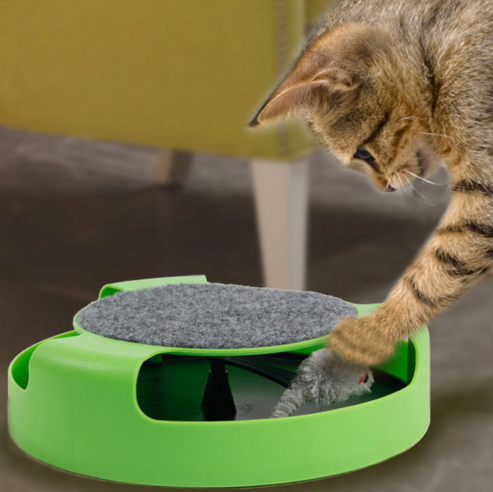 Catch A Mouse Toy For Cats