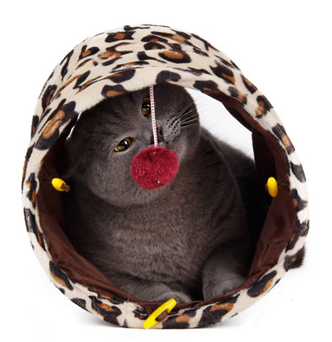 Cat Tunnel With Ball Toy