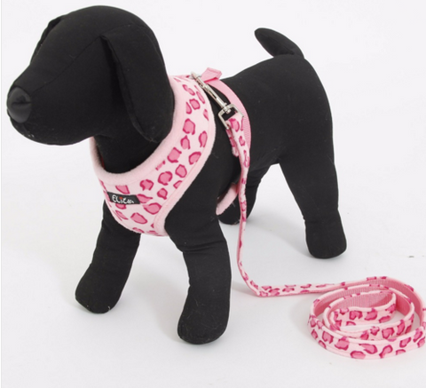 Adjustable Collar And Harness For Cats & Dogs