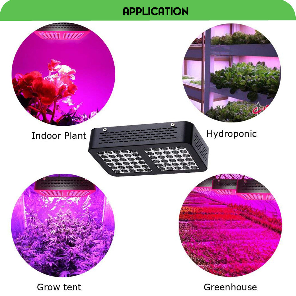 600W Weed plant grow lights full spectrum led 60pcsx10w