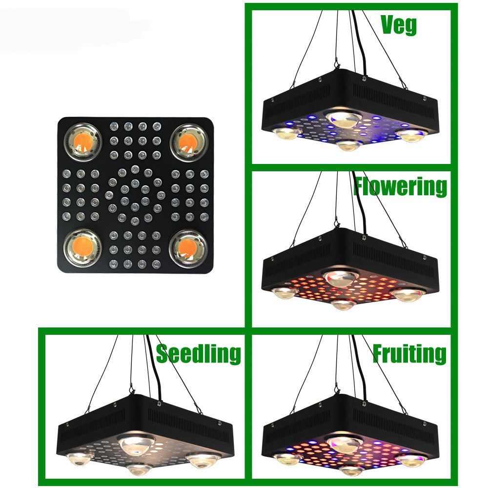 4pcs CXB  2550umol/30cm1000W led weed grow light