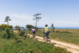 Bike Tour from Porto to Lisbon - Silver Coast of Portugal