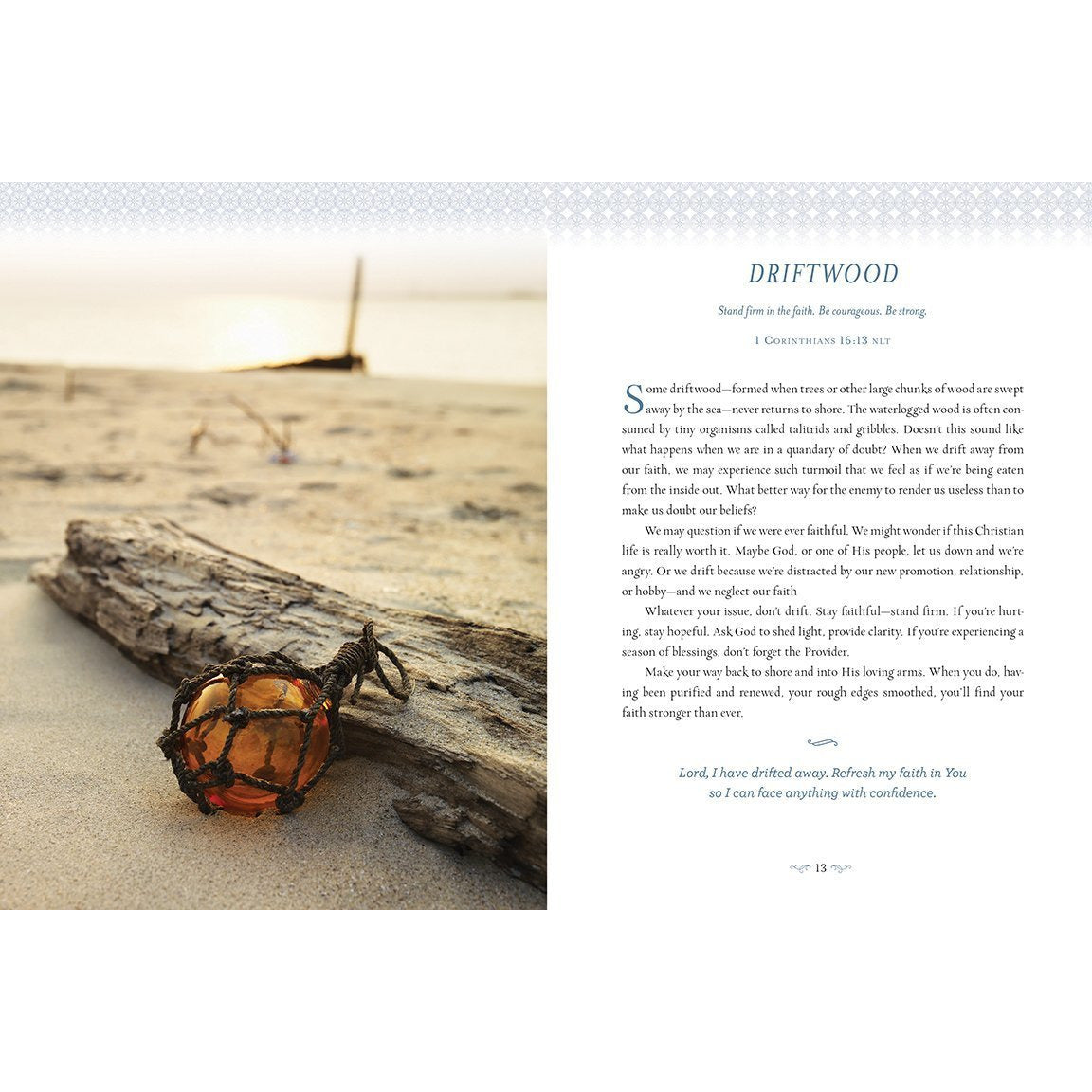 Devotions from the Beach: 100 Devotions Driftwood