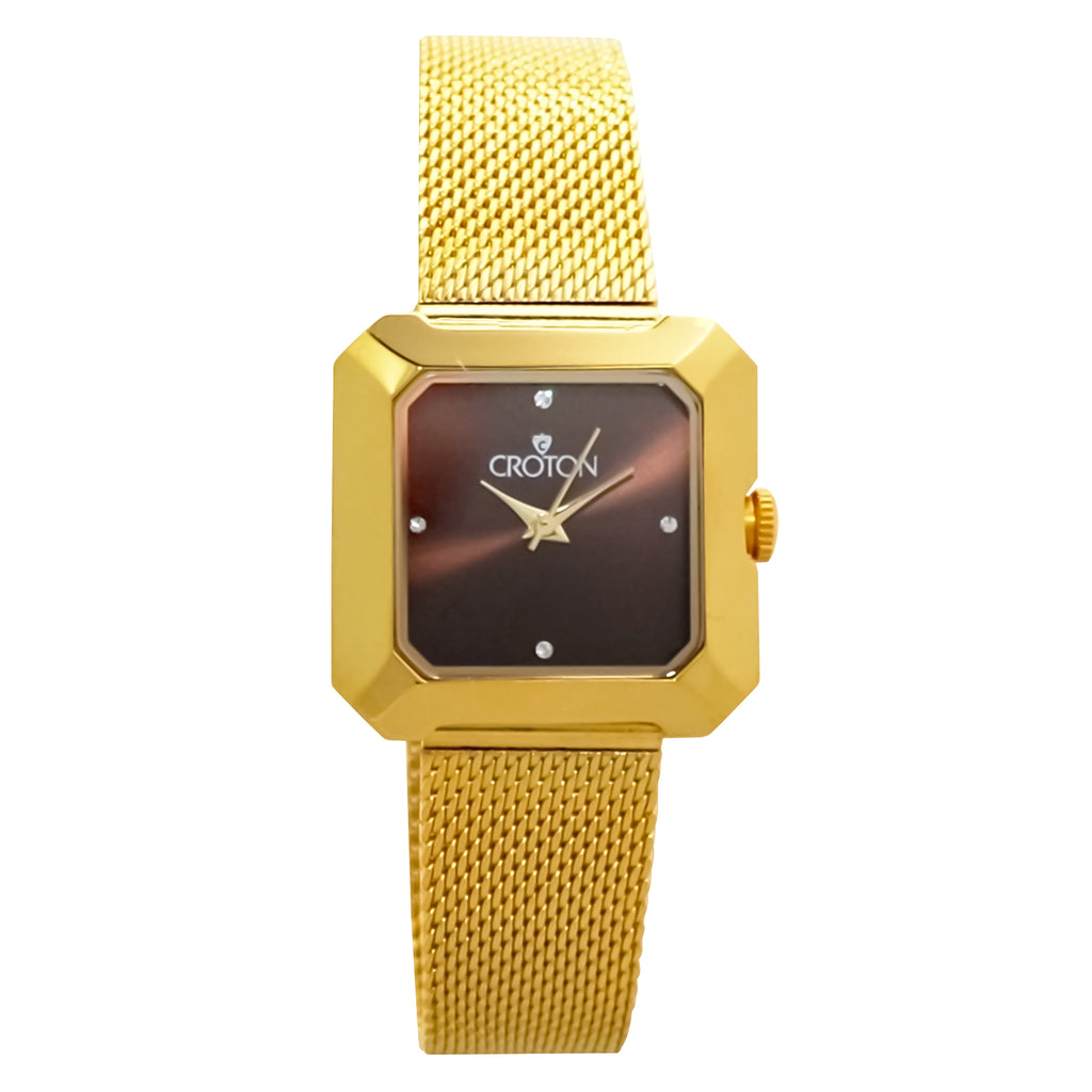 Ladies All Stainless Steel Goldtone Mesh Bracelet Watch with Brown Dial