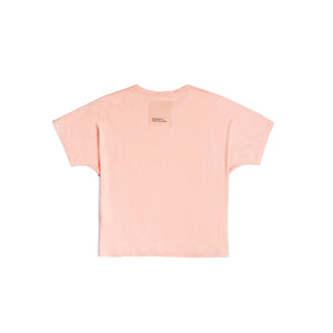 The Journey Salmon T-Shirt