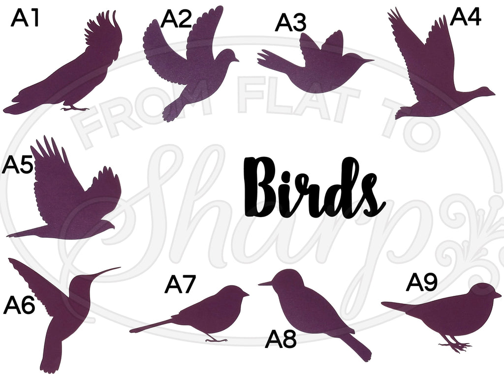 Birds Decals