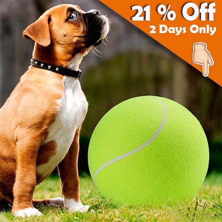 24cm Giant Tennis Ball For Dog Fetch Them All