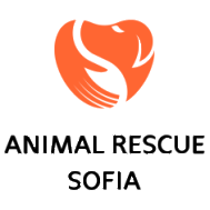 Image of Animal rescue