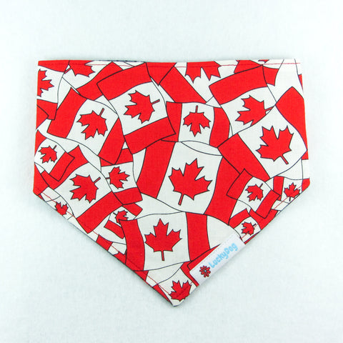 True North Bandana