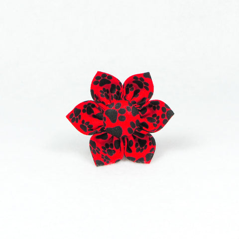 Paws Red & Black Flower