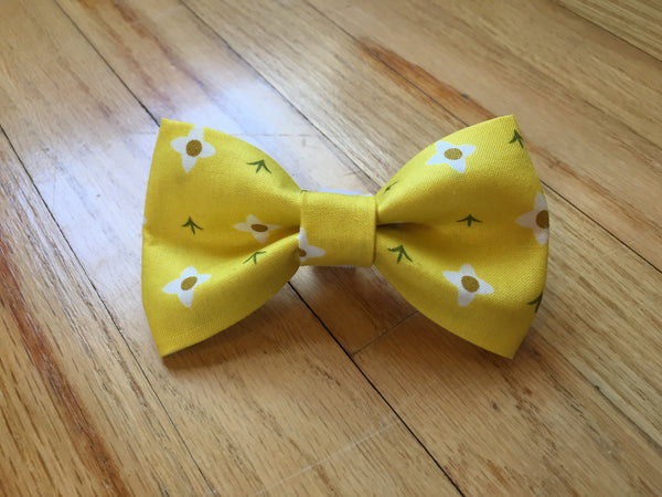 Springtime Bow Tie & Collar Set