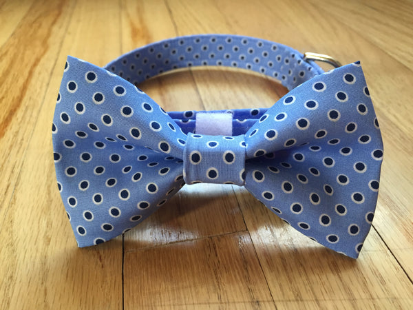 Smarty Pants Bow Tie & Collar Set